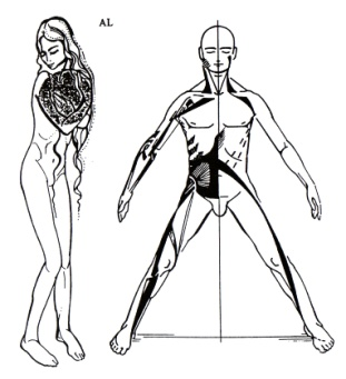 antero-laterale spierketting